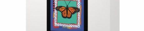 Butterllies Card