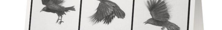 Raven's Flight Card