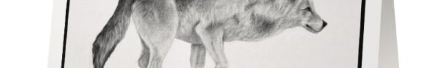 Wolf 2 Card
